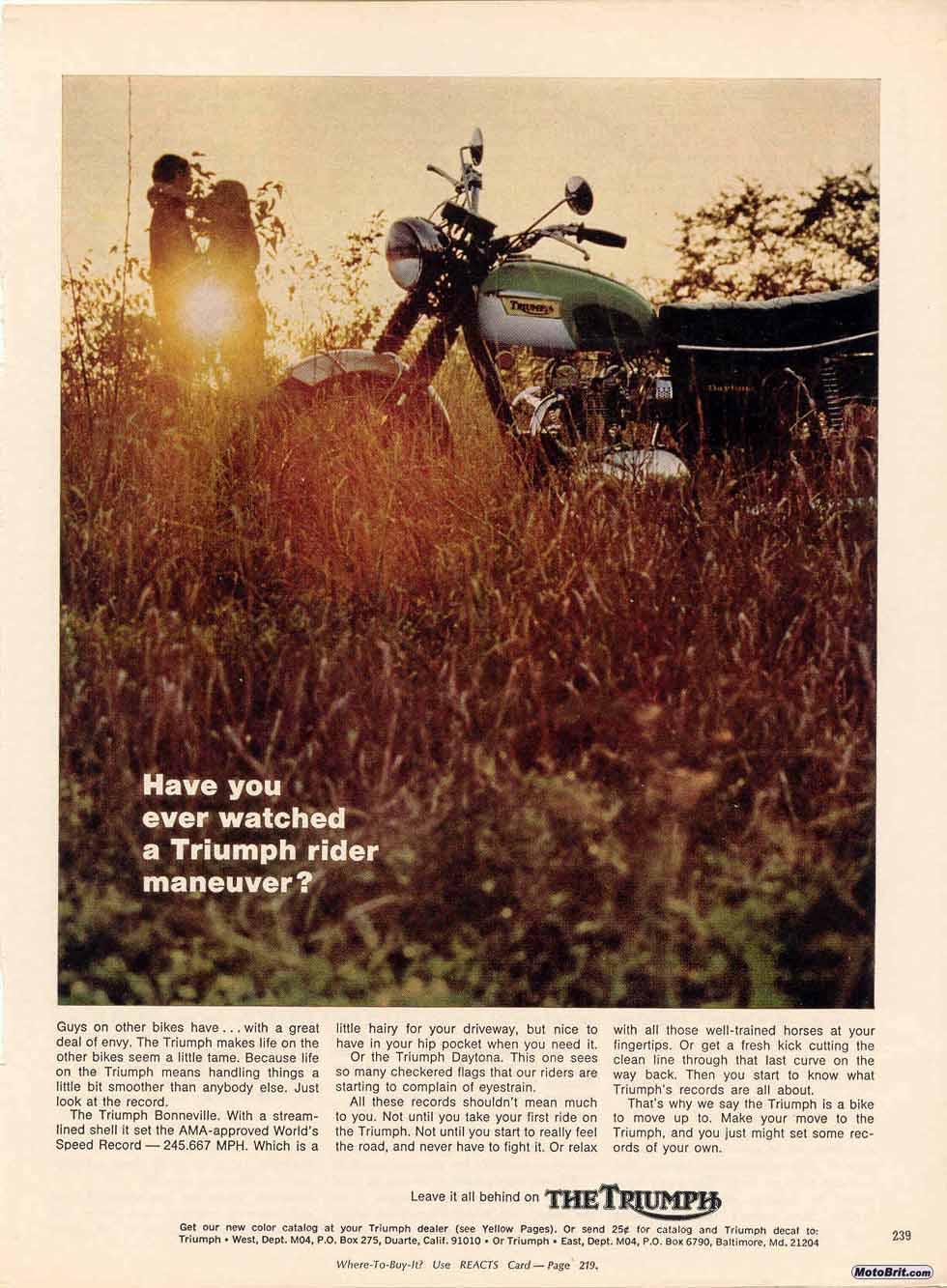 1969 Triumph Daytona 500